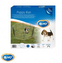 Duvo Puppy Run