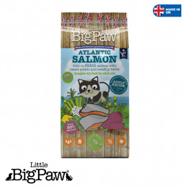 Big Paw Adult Cat Salmon 1.5KG