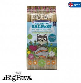 Big Paw Cat Senior Light 1.5KG