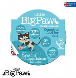 Big Paw Salmon 85gr