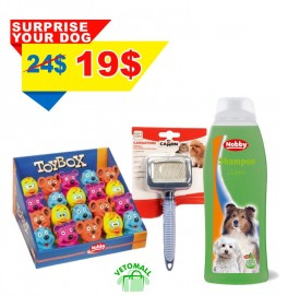 Surprise Your Dog